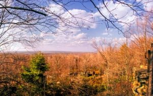 Clear Creek State Forest Lookout