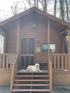 cabin ext w/dog