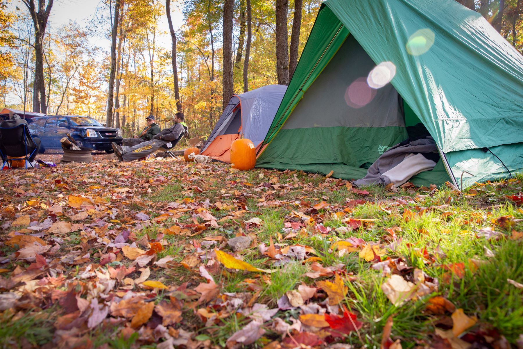 Camping at Jellystone